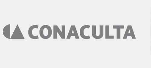 Consejo Nacional Para La Cultura Y Las Artes Conaculta Detalle