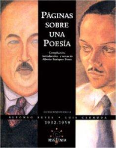 Páginas sobre una poesía