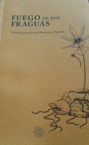 Fuego de dos fraguas : poetas jóvenes de México y España
