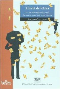 Lluvia de letras : Lección antológica de poesía iberoamericana y otros lugares (Paseos VIII)