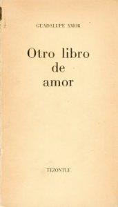 Otro libro de amor