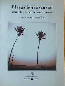 Playas borrascosas: Entrevistas con escritores veracruzanos