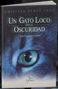 Un gato loco en la oscuridad: antología personal