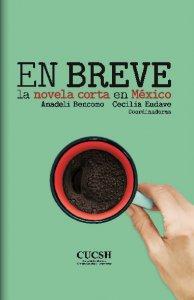 En breve : la novela corta en México