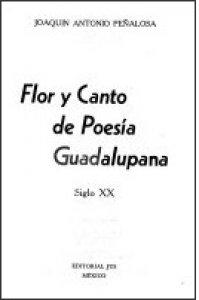 Flor y canto de poesía guadalupana