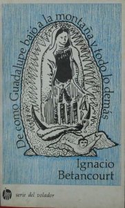 De cómo Guadalupe bajó a la montaña y de todo lo demás