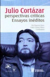 Julio Cortázar. Perspectivas críticas