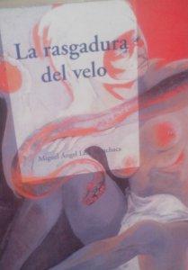 La rasgadura del velo : narradores latinoamericanos del siglo XX