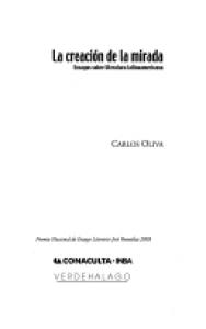 La creación de la mirada : ensayos sobre literatura latinoamericana