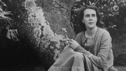 Historias de vida - Leonora Carrington