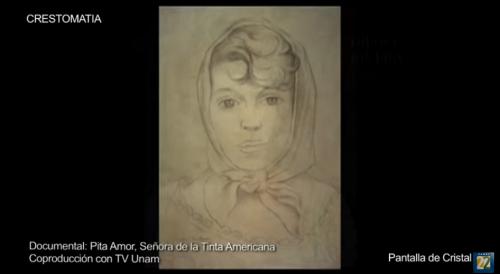 Pita Amor, señora de la tinta americana