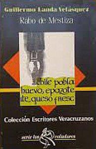 Rabo de mestiza : croniquillas desde Huatusco