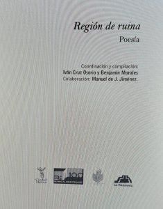 Región de ruina : poesía : generación literaria Bi-100 : Ciudad de México, 1970-1990