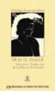 Tras el paisaje : Antología de la poesía italiana