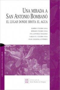 Una mirada a San Antonio Bombanó : el lugar donde brota el agua
